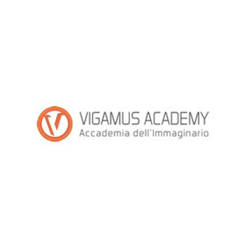 Vigamus Academi